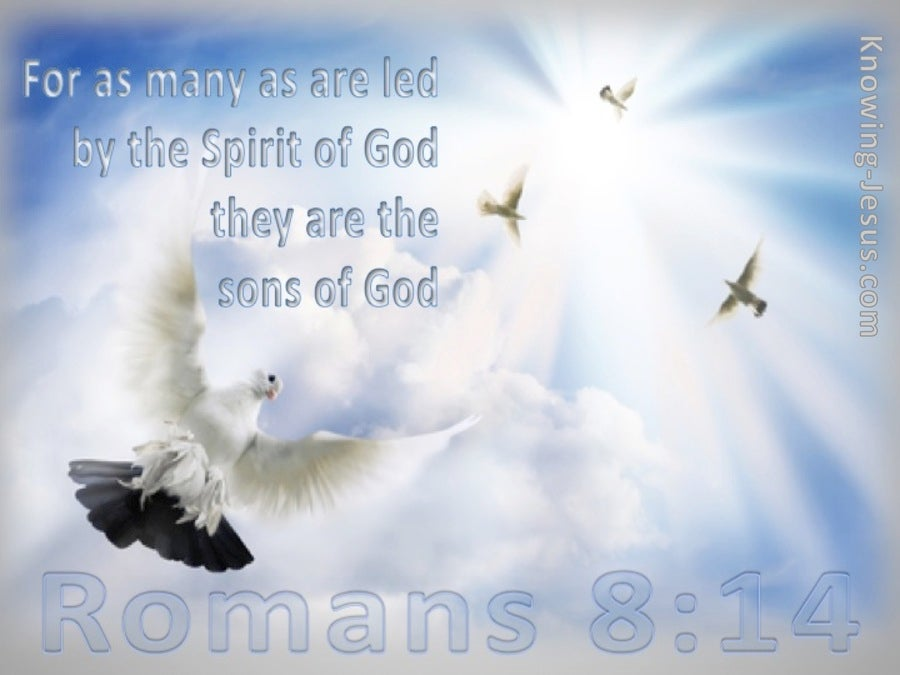 Romans 8:14 Led By The Spirit (blue)